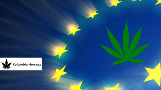 Európa lesz a világ legnagyobb legális cannabis piaca